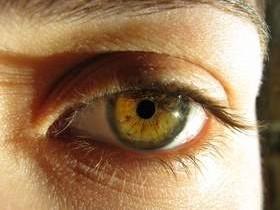 Zwyrodnienie plamki żółtej